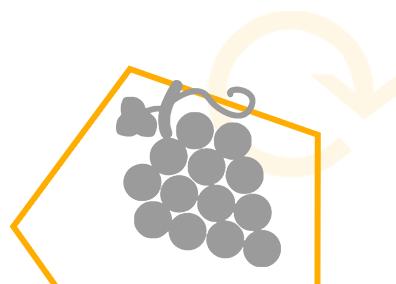 Software pour les entreprises viticoles et vinicoles